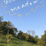 写真に文字を描く