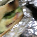サンドウィッチを作った件